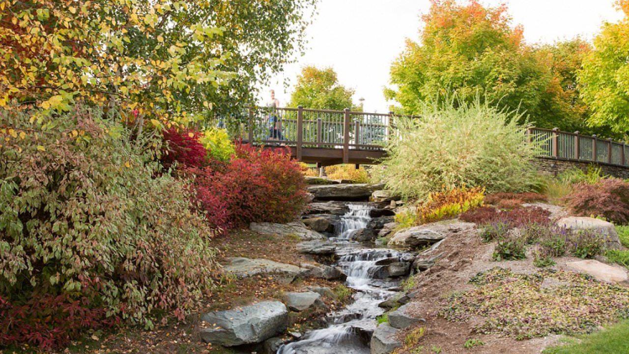 landscaping with a stream and bridge at Bethel Woods