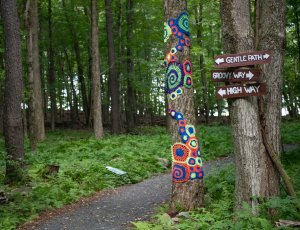 A crocheted tree next to trail marker signs on the famous Bindy Bazaar Trail