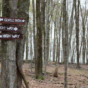 Bindy Bazaar trail at Bethel Woods